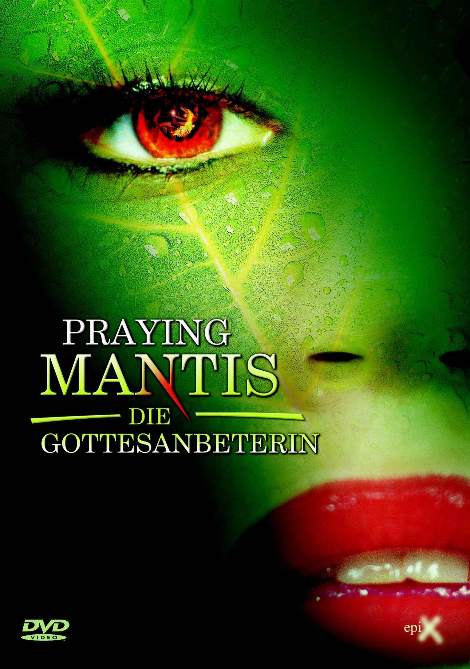 PRAYING MANTIS Frontcover FINAL